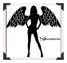 Shannons angel